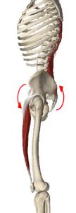 反り腰,改善,パーソナルトレーニング