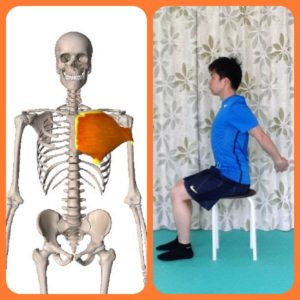 大胸筋,伸ばす方法,パーソナルトレーニング