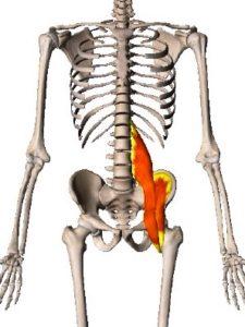 股関節,腸腰筋,ストレッチ
